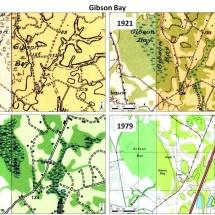 gibson_bay_USGS_mapsweb